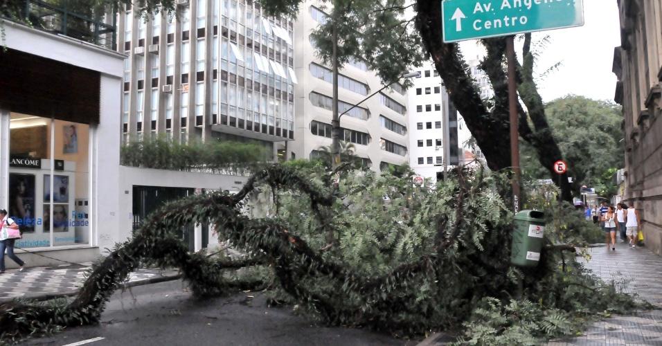 8.mar.2013 - Forte chuva causa queda de árvore na rua Bela Cintra, região central de São Paulo (SP), nesta sexta-feira. A rua foi interditada entre o trecho da avenida Paulista e a rua Fernando de Albuquerque. Ninguém se feriu.