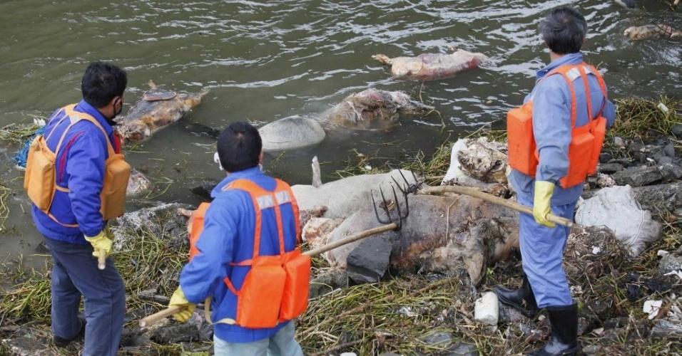11.mar.2013 - Agentes de limpeza retiram carcaças de porcos de rio em Xangai, na China