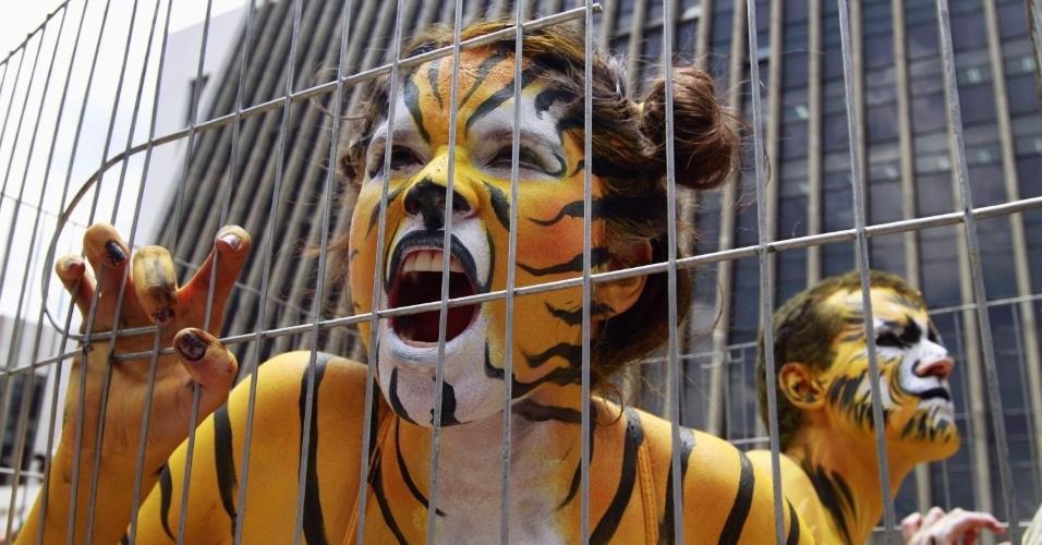 11.mar.2013 - Ativistas dos direitos dos animais pintaram o corpo para protestar, dentro de uma jaula, em Medellín (Colômbia), a favor da aprovação do projeto lei que proibiria o uso de animais nas apresentações de circos no país