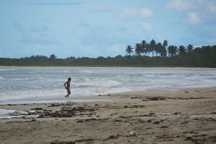 Coqueiros e vegetação complementam a paisagem da praia de Paripueira, em Alagoas