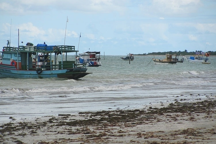 Muitas embarcações ficam estacionadas em área da praia de Paripueira