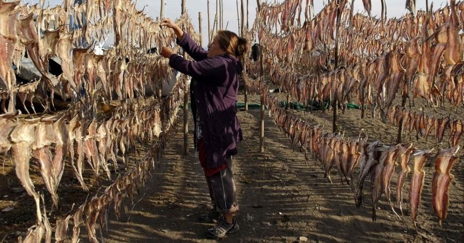20.mar.2013 - Moradora recolhe peixe ressecado para vender em mercado na cidade de Coronel, a 550 km de Santiago, capital do Chile