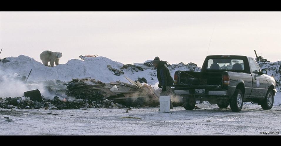 28.mar.2013 - ÁLBUM DA BBC - Os avistamentos de ursos polares perto de comunidades humanas também aumentaram. 'Acreditamos que a distribuição de ursos polares está mudando devido à redução e distribuição do mar de gelo, que os leva para a terra por períodos mais longos', disse o professor Derocher. Acima, um urso é visto em um depósito de lixo em Churchill, Manitoba, no Canadá
