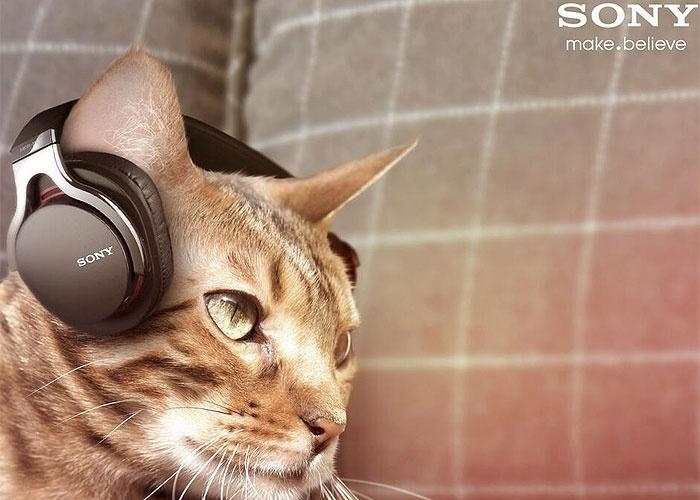 2013 - A Sony anunciou no Twitter (sua conta britânica) um fone de ouvido para gatos. A falsa novidade faz parte da linha Animalia, com produtos tecnológicos para animais de estimação