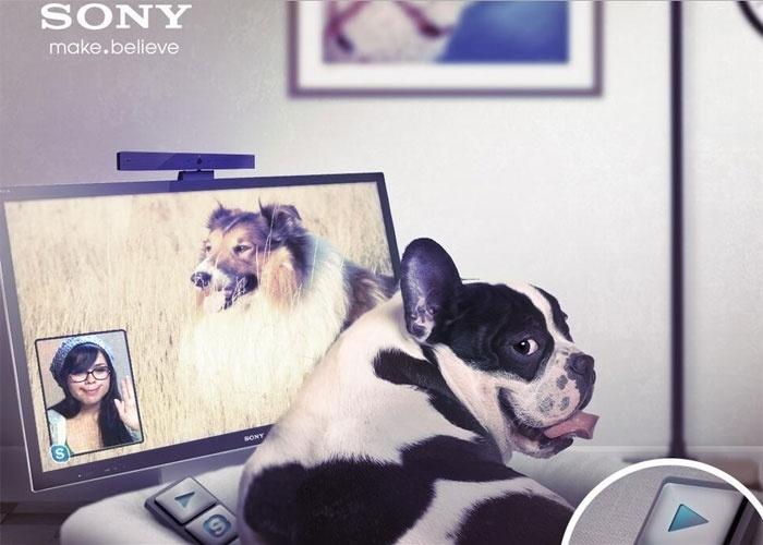 2013 - A Sony anunciou no Twitter (sua conta britânica) uma TV de cachorro ? não se trata daquela tradicional, com frangos, mas sim um modelo com ultradefinição (tecnologia chamada 4K). A falsa novidade faz parte da linha Animalia, com produtos tecnológicos para animais de estimação