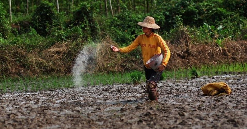 """2.abr.2013 - Abril - O lixo gerado pela indústria de fertilizantes contaminou diversas regiões da China, acusa novo relatório do Greenpeace. Segundo a organização, o fosfato de gesso, subproduto de fertilizantes fosfatados, contém substâncias altamente nocivas, como arsênico, mercúrio e outros metais pesados, e o país """"já acumulou, ao menos, 300 milhões de toneladas de fosfogesso, ou seja, 200 quilos por habitante"""""""