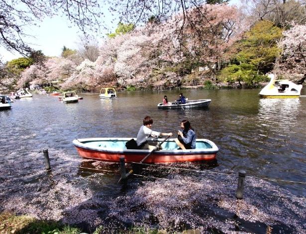 4.abr.2013 - Jovem casal rema em lago coberto de pétalas de flor de cerejeira em parque de Tóquio (Japão). Observar a floração das cerejeiras --árvore-símbolo do país-- é um passatempo que faz parte da cultura do país