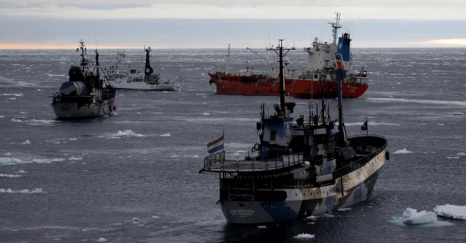 5.abr.2013 - Abril - Barcos da ONG Sea Sheperd cercam navio-tanque da frota baleeira japonesa (laranja) no oceano Antártico, em fevereiro de 2013. O Japão encerrou a temporada de caça às baleias com a captura de 103 baleias rorquais, a menor taxa desde 1987