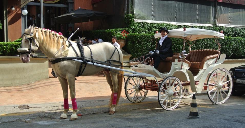 Na entrada dessa festa de aniversário, produzida pela Mog & Mug com tema Hipismo, os convidados eram recebidos por uma carruagem com cavalo branco