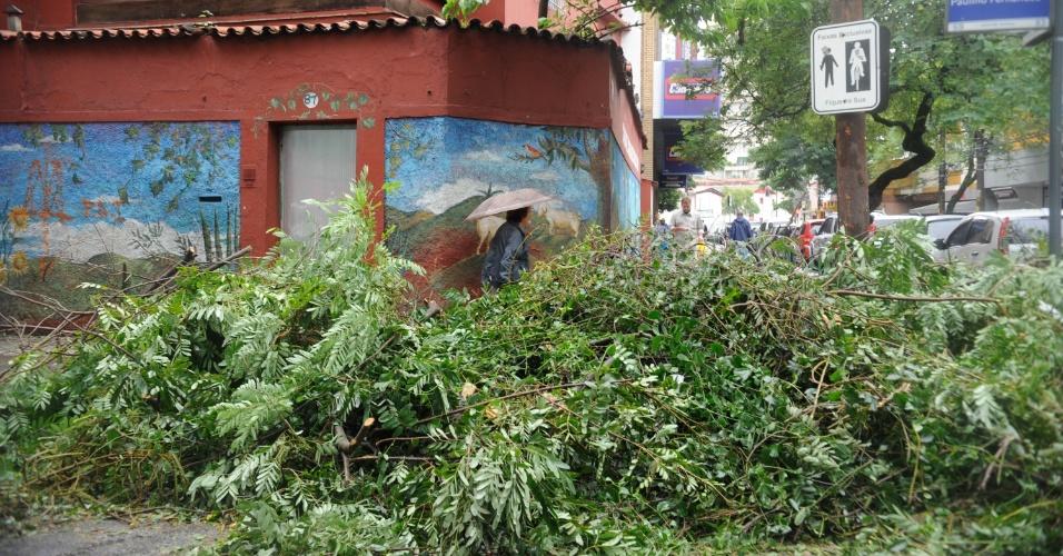 6.mai.2013 - Galhos de árvore tomam conta de ruas do bairro Botafogo, no Rio de Janeiro, e atrapalham a circulação de pedestres e de carros. Uma ventania, que chegou a alcançar 93 quilômetros por hora (km/h), deixou vários bairros cariocas sem energias, além de vias obstruídas