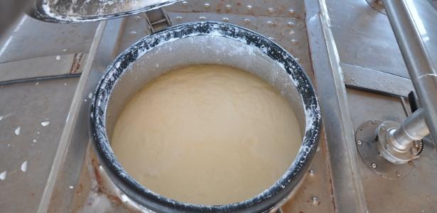 Total de leite adulterado movimentado pelo grupo, no período de um ano, chegou a 100 milhões de litros