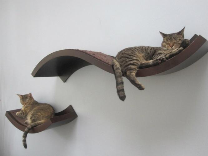 prateleiras-como-das-urban-pet-house-wwwurbanpethauscom-podem-entreter-os-bichanos-mesmo-em-ambientes-com-pouco-espaco-para-evitar-acidentes-e-importante-que-sejam-bem-fixadas-a-1368733190471_666x500 Mudança de lar sem estresse: veja como adaptar cães e gatos à nova casa
