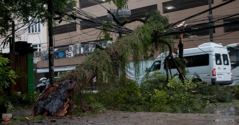 17.mai.2013 - Chuva e vento derrubam árvore na esquina das ruas Guilhermina Guinle e São Clemente, em Botafogo, Rio de Janeiro, na manhã desta sexta-feira (17). A árvore atingiu a fiação e causou problemas no trânsito no local, que ficou parcialmente interditado. Os bombeiros foram acionados