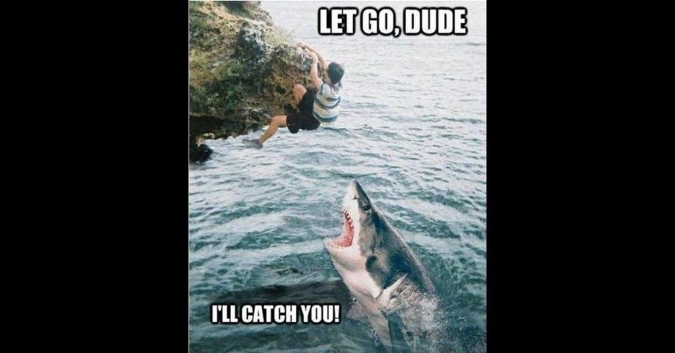 Na imagem, a legenda 'Pode pular, amigo. Eu te seguro'. A modinha da web Shark Attack - Ataque de Tubarão - consiste em brincar com imagens de tubarões, fazendo montagens e colocando o bichano em diferentes cenários e posições