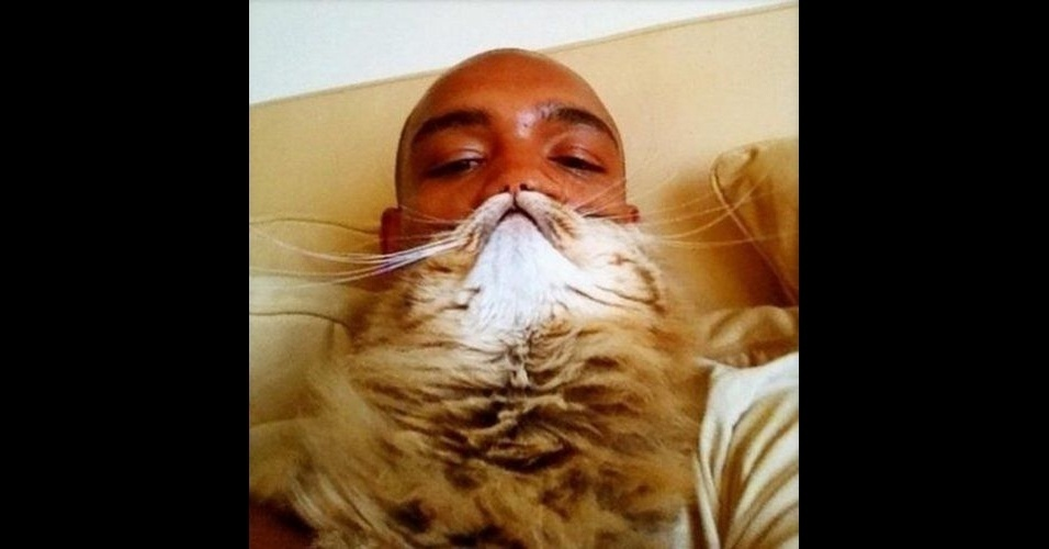 Não tem barba? Sem problemas, use seu gato como se fosse uma - mas tire uma foto disso e ponha na internet depois. É o que propõe uma modinha na internet, em que os usuários posicionam os bichanos no rosto, de forma que os pelos do animal pareçam uma barba de verdade (mas que não engana ninguém, obviamente). Veja as imagens dessa brincadeira