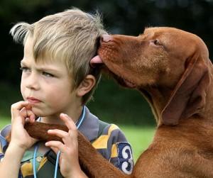 cachorro_humano_crianca_afeto