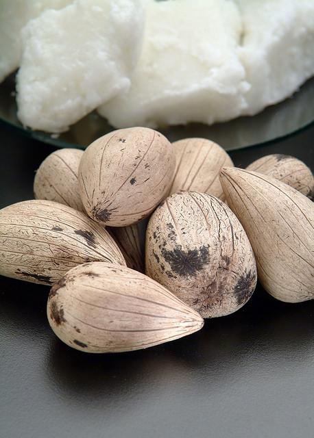 Murumuru: Fruto está no centro de processo, em tramitação no STF, movido contra a Natura por acusação de biopirataria (Foto: Beraca/Flickr)