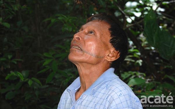 O xamã Matsés chamado Cesar. Foto: cortesia da Acaté