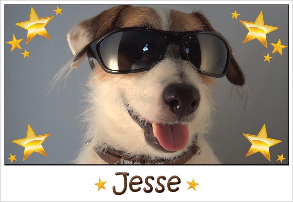 SunglassesJesse_zpsdd011081