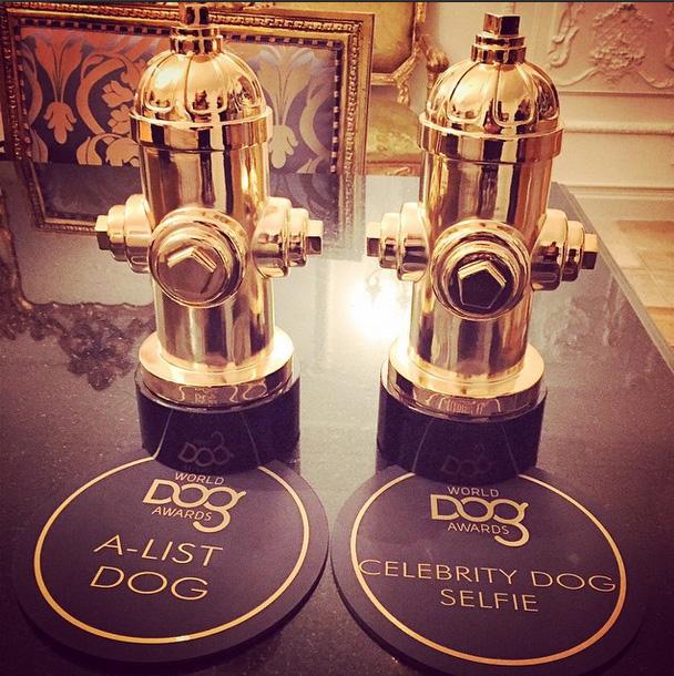 Nas redes sociais, Paris Hilton publicou uma foto dos dois troféus que levou para casa
