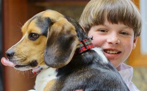 Menino cria biscoito para cães e hoje fatura US$ 350 mil por mês