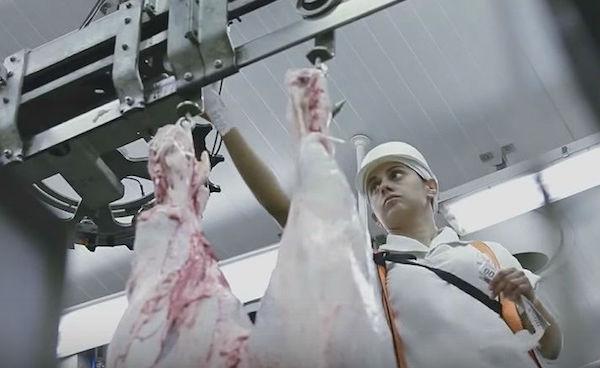 Propaganda da Marfig mostra funcionário em frigorífico. Empresa foi autuada por não comunicar doenças. Foto: Reprodução