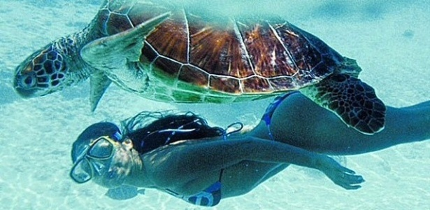 12.out.2014 - Isis Valverde postou uma bela imagem na manhã deste domingo. Na foto, a atriz aparece nandando no mar ao lado de uma tartaruga marinha.
