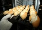 Veja como é feito o pão francês e outras delícias (Foto: Rodrigo Paiva/BOL)