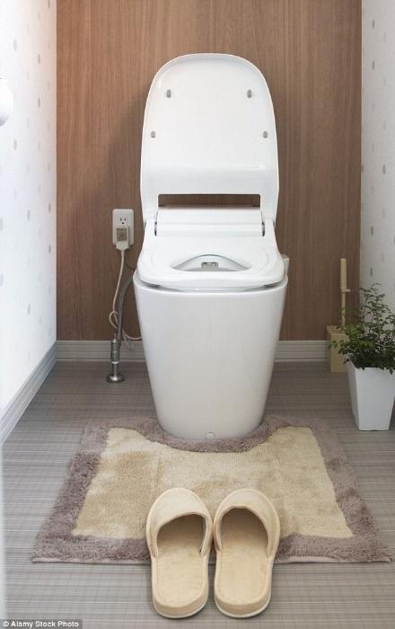 3.dez.2015 - Segundo o especialista, tapetes grossos, usados para não molhar o piso na saída do banho, costumam ser usados em banheiros de jovens de classe média. Já tapetes que 'abraçam' o vaso sanitário costumam aparecer no ambiente de casas de pessoas mais 'certinhas'