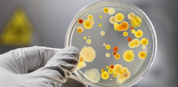 Bactérias e outros micróbios estão em nossas casas, mas muitos são inofensivos