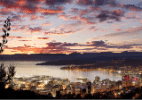 Sustentabilidade, cidadania e roteiros mil na Nova Zelândia - Divulgação