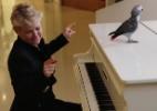 """Xuxa diz que não ter chefe no YouTube é fascinante: """"Eu me jogo de cabeça"""" - Reprodução/YouTube/Canal X"""