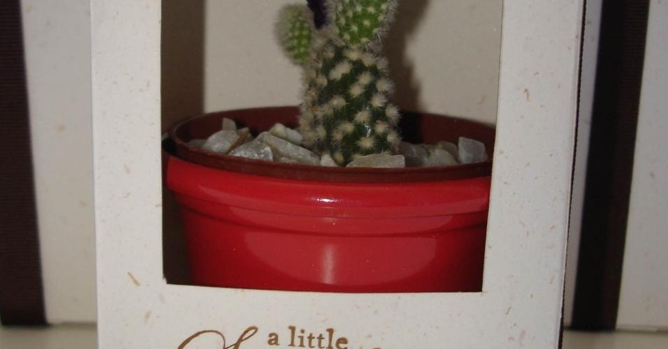 Cacto em vasinho com pedrinhas e com caixinha personalizada; da Le Scrap Criações (www.lescrapcriacoes.com), por R$ 14. Disponibilidade e preço pesquisados em junho de 2013 e sujeito a alterações