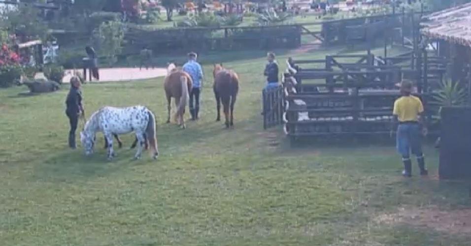 08.jul-2013 - Denise Rocha e Ivo Meirelles trocaram farpas na manhã desta segunda-feira enquanto a advogada cuidava dos cavalos