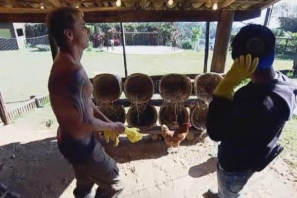 11.jul.2013 - Paulo Nunes tenta ajudar Yudi a pegar ovos, mas apresentador fica em pânico com as galinhas