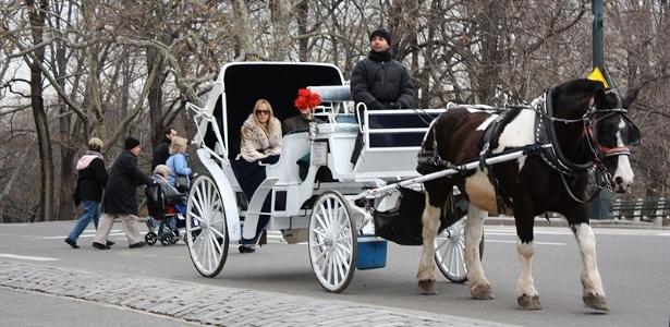 Turistas passeiam de carruagem no Central Park durante o inverno