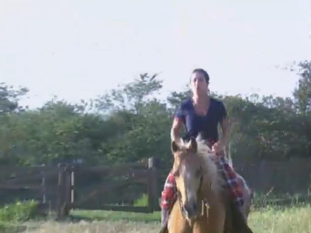 12.jul.2013 - Scheila Carvalho elogia cavalo Jano.