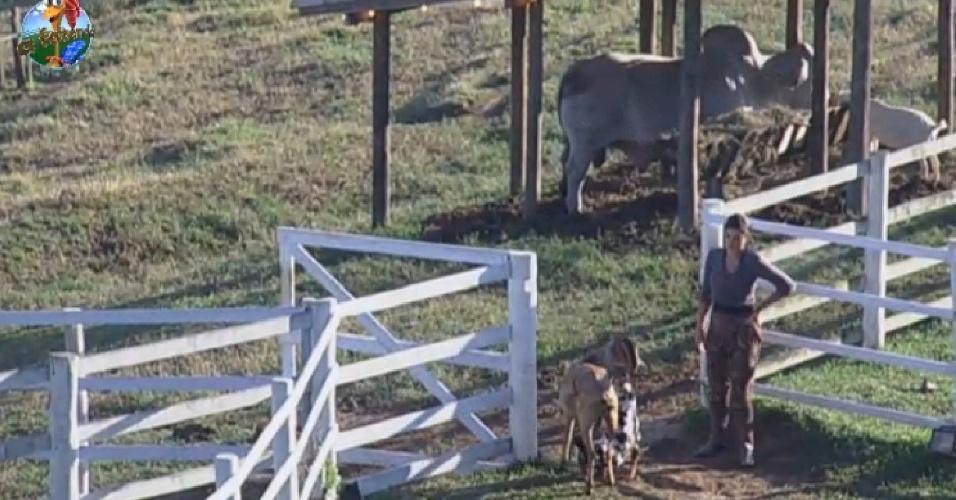 13.jul.2013 - Andressa Urach cuida das cabras na manhã deste sábado