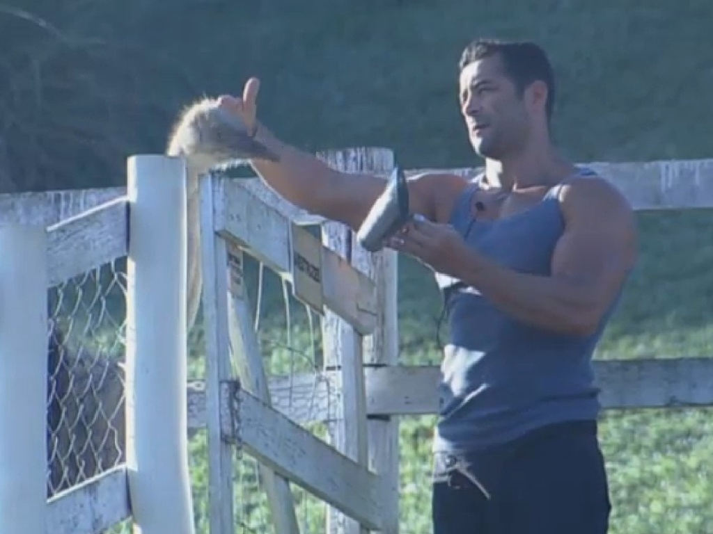 14.jul.2013 - Depois de noite tumultuada, Marcos Oliver tenta fazer carinho no avestruz