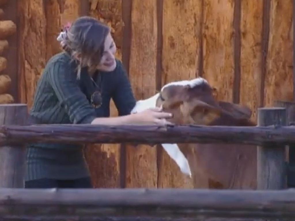 21.jul.2013 - Andressa brinca com bezerro após o animal obedecer às suas ordens