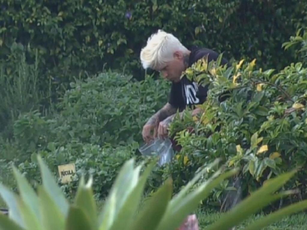 22.jul.2013 - Mateus cuida da horta na manhã desta segunda-feira