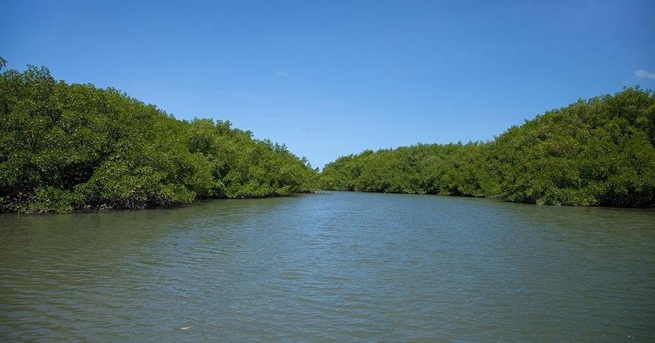 Canal de Santa Cruz, na Ilha de Itamaracá, é margeado por vegetação de manguezal