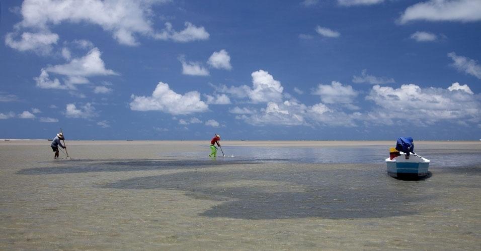 No lado oposto da Coroa do Avião, pescadores trabalham no mangue seco para catar mariscos na areia, enquanto a maré está baixa