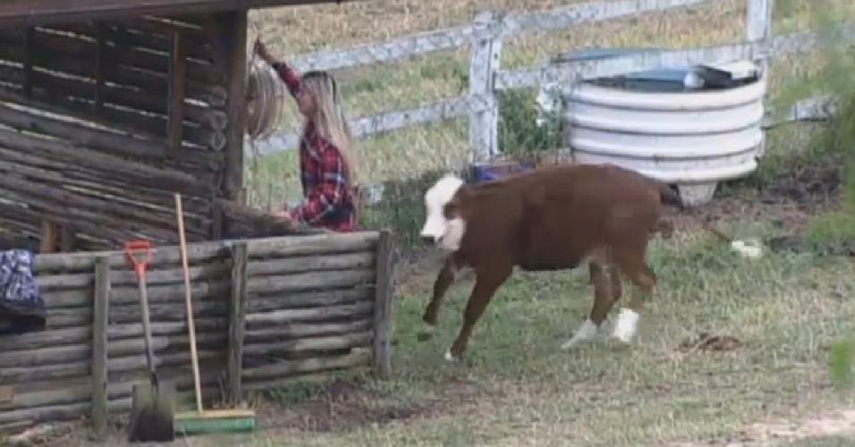 17.ago.2013 - Bárbara Evans se assusta com bezerro brincalhão enquanto cuidava dos porcos