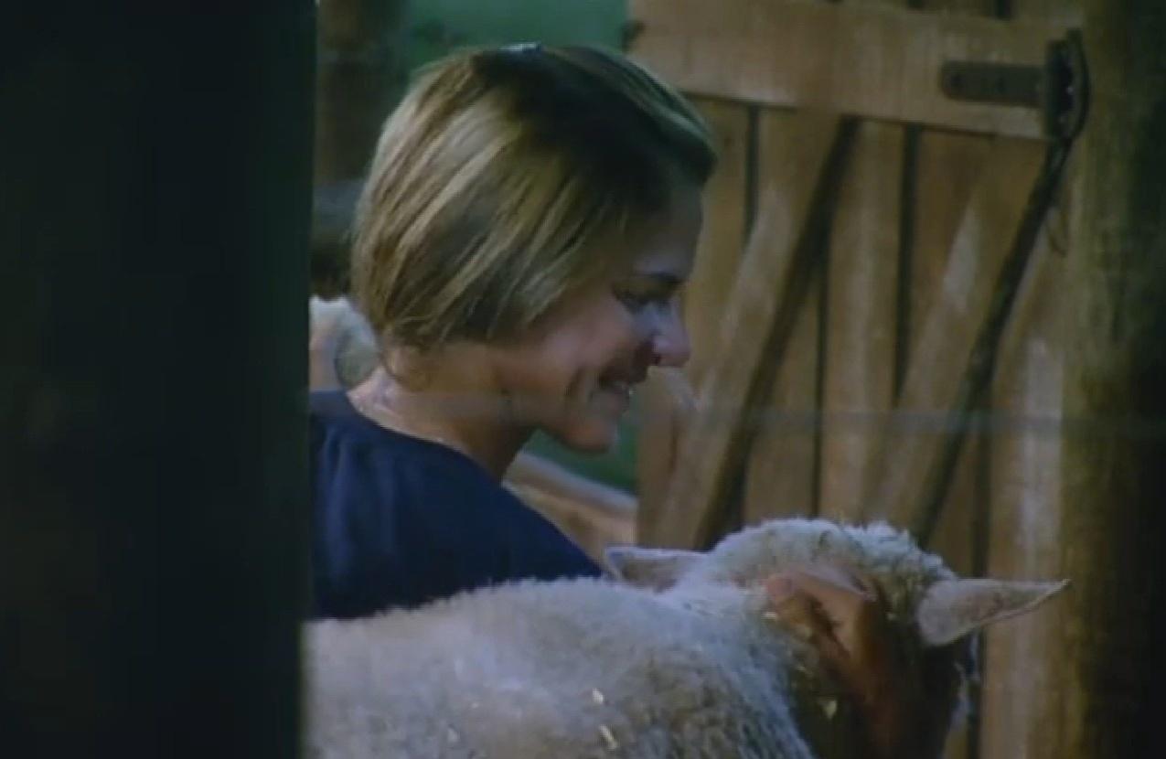 24.ago.2013 - Denise Rocha visita ovelhas na área dos animais