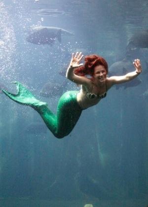 Sereia Coral nada no aquário e interage com o público nos fins de semana