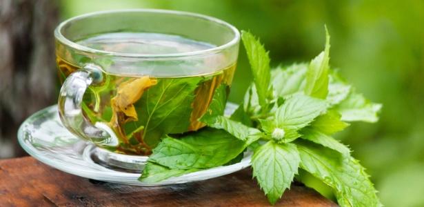 Ervas recém-colhidas dão mais sabor ao chá. A hortelã gosta de sol e de um vasinho exclusivo