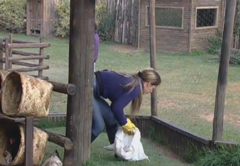5.set.2013 - Denise deu as instruções para que Gominho cuidasse do chiqueiro