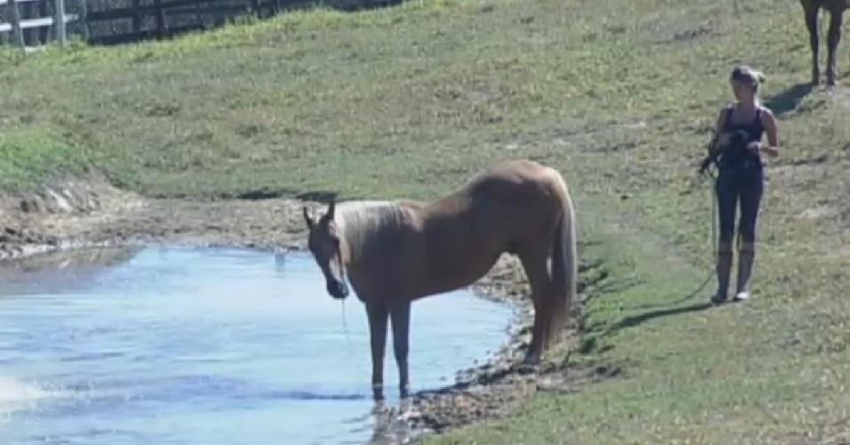 15.set.2013 - Bárbara Evans cuida dos cavalos na manhã deste domingo