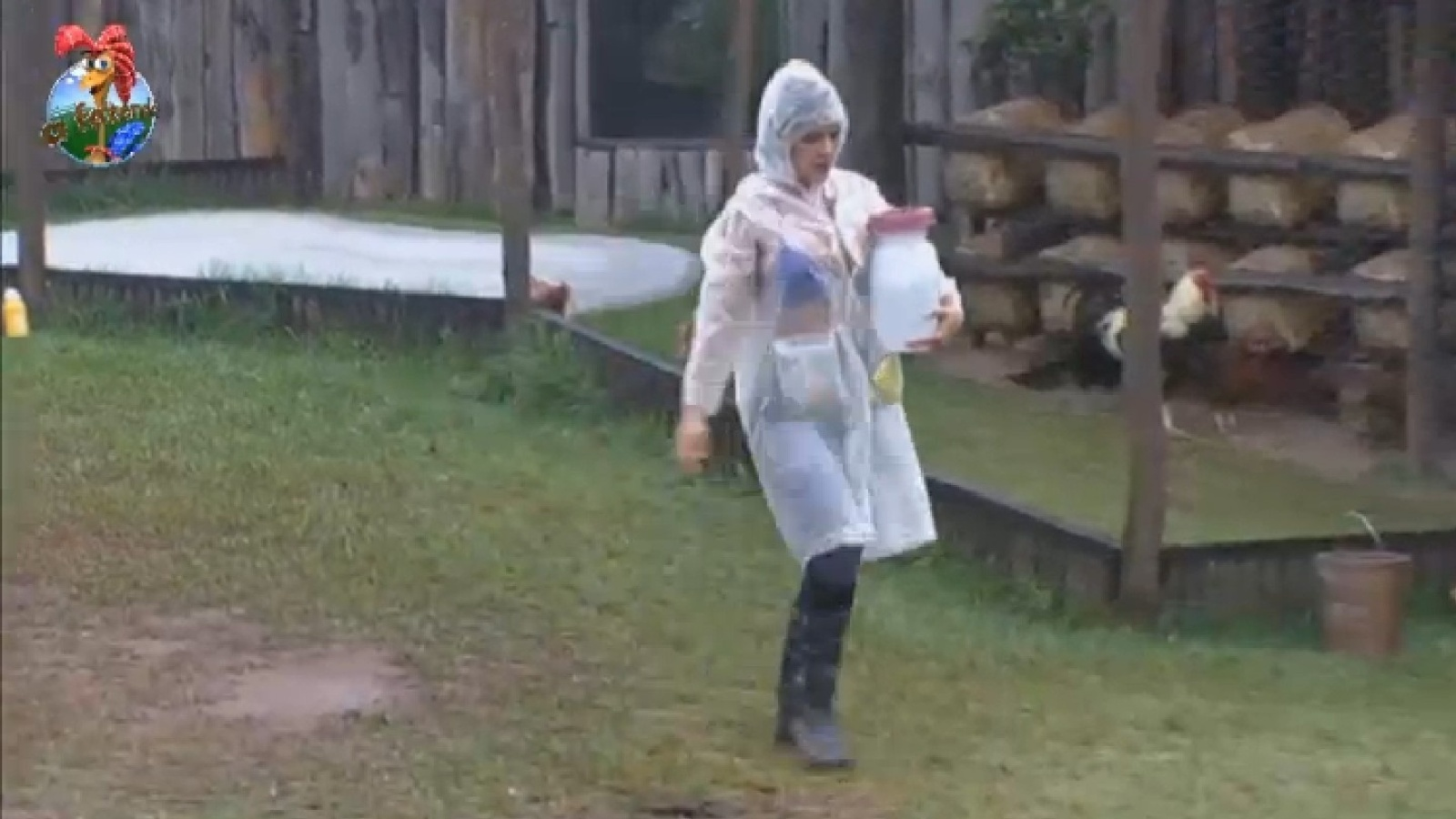 17.set.2013 - Fazendeira da semana, Denise Rocha cuida das aves